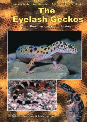 Eyelash_geckos